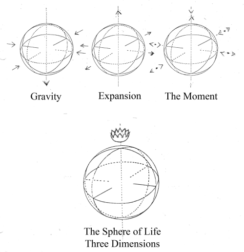 The Sphere of Life - Three Dimensions
