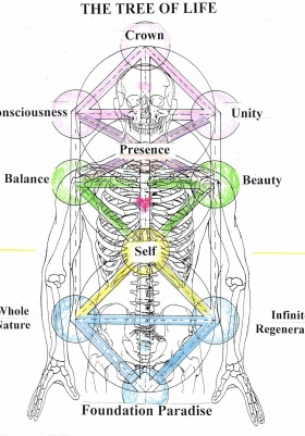 The Tree of Life The Ten Dimensions of Life