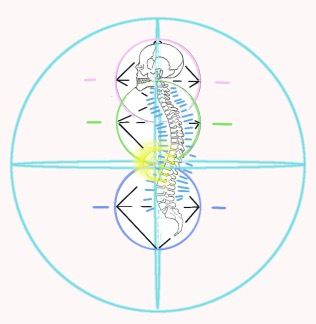 Spine with angles in sphere of life