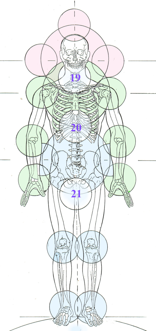 21 Centerings biomechanical (1)