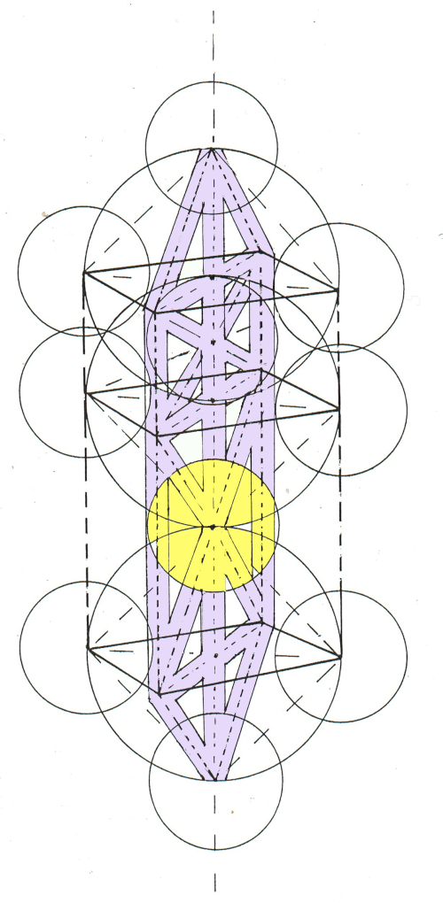 Three dimensional matrix of balance and tree of life from side (1) (1)
